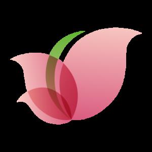 dr1 logo